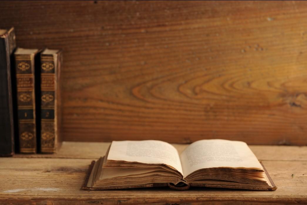 História da língua portuguesa em resumo: do período românico ao século XVI