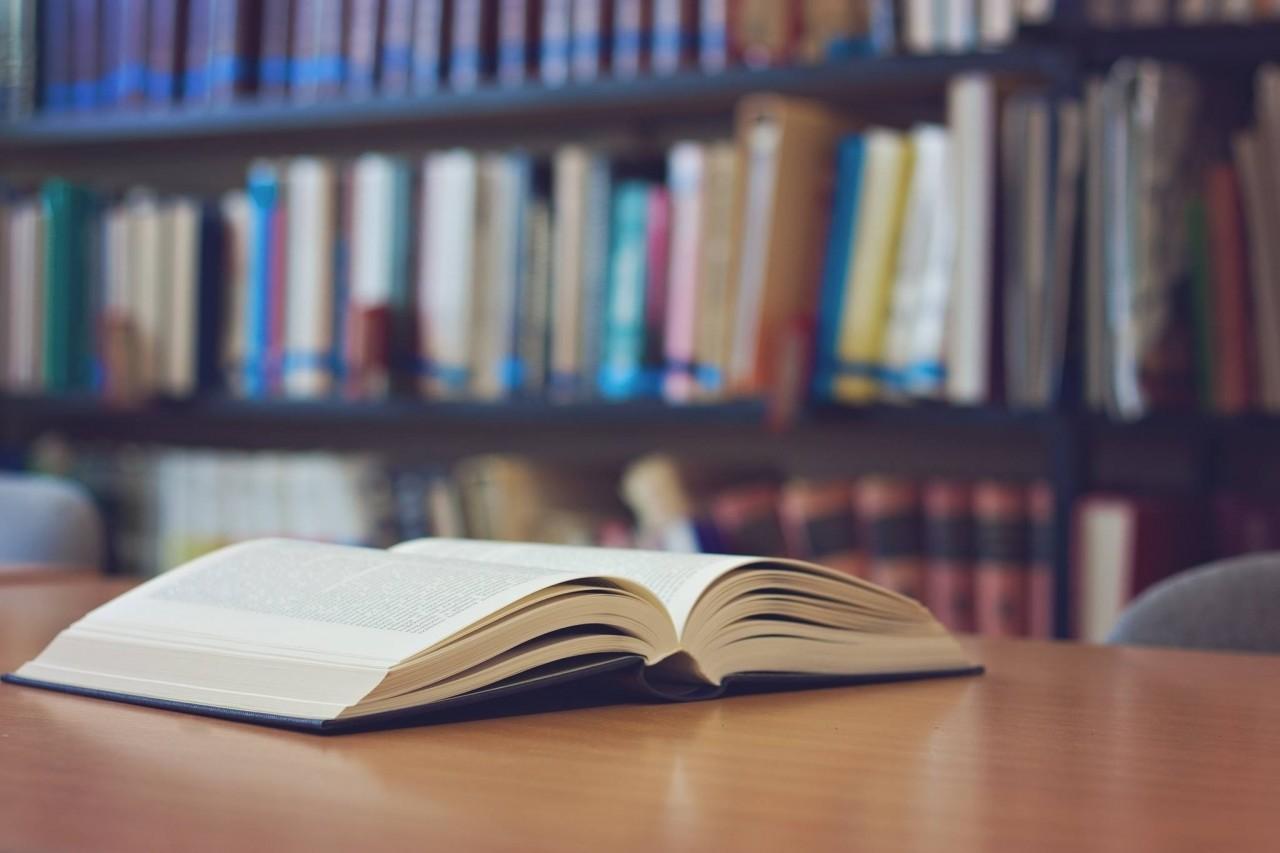 Linguística revista: novos autores que são promessa na área de Letras